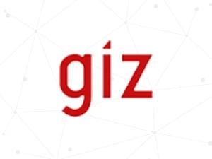 giz – State of eGovernence in Palestine